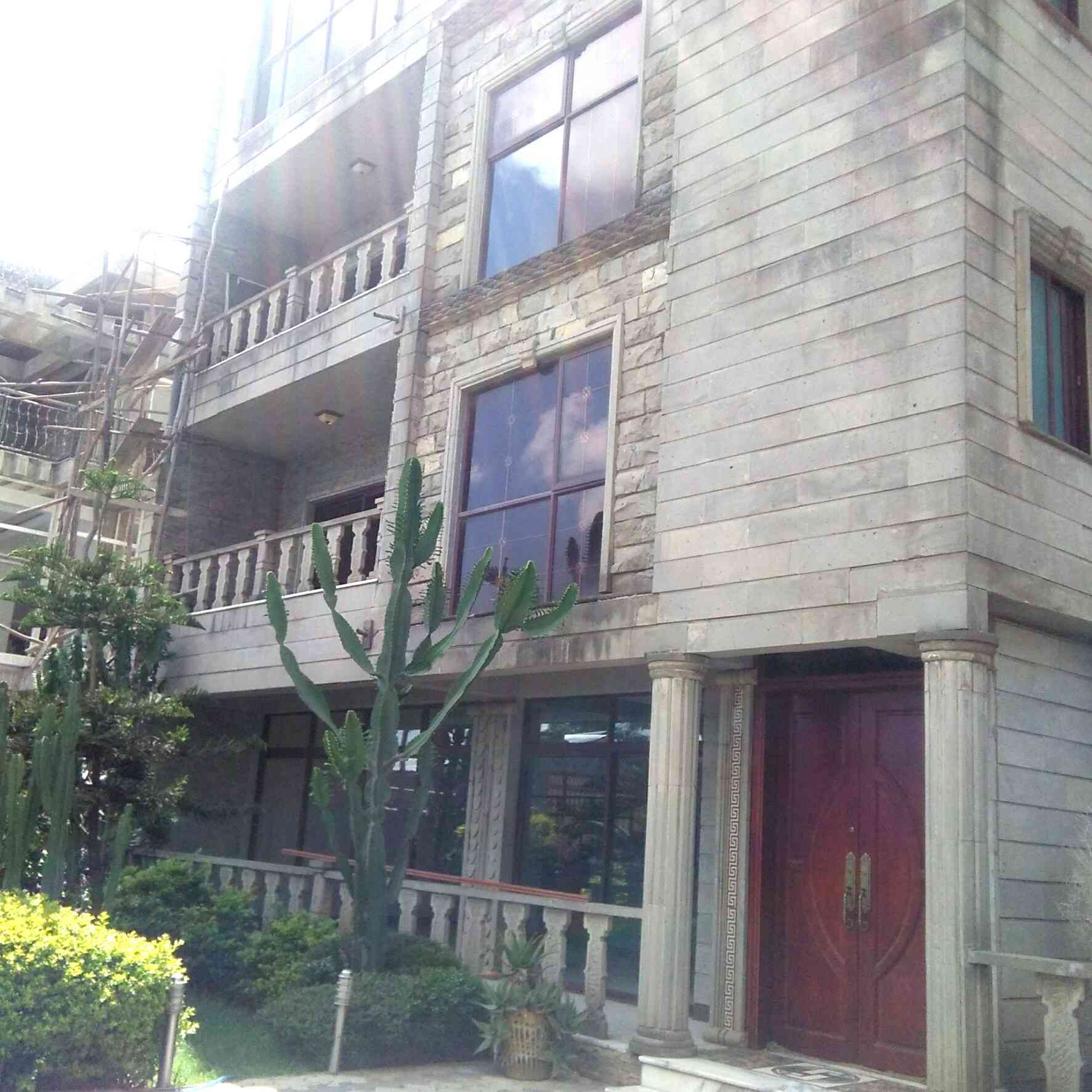 Executive Home For Sale in Addis Ababa, Megenagna
