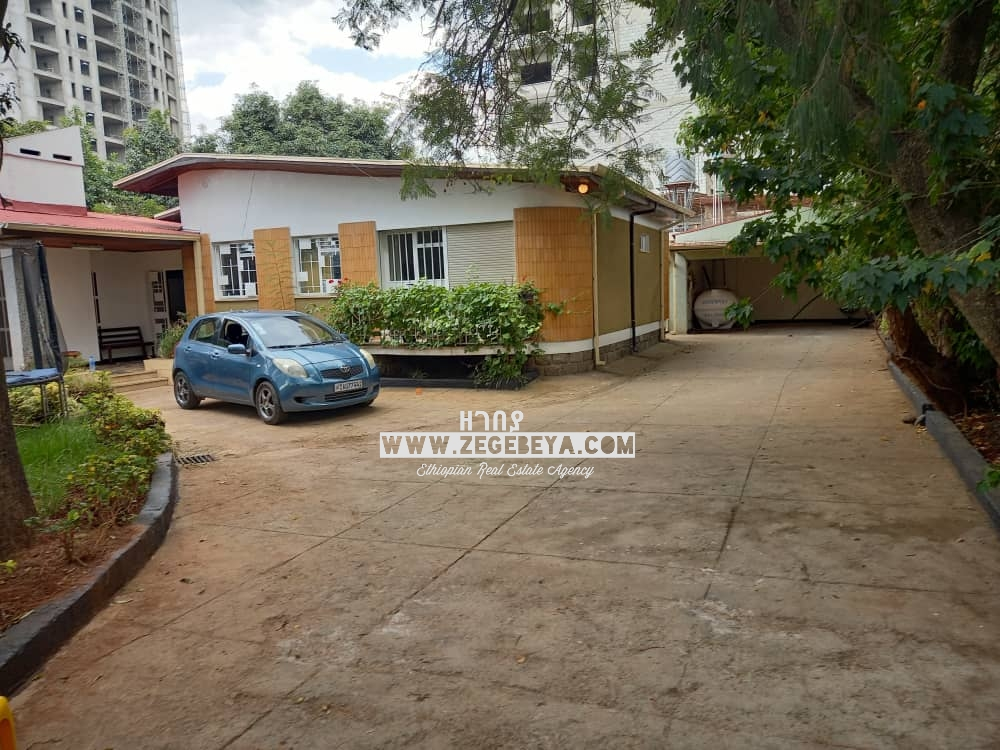 Furnished Villa With Big Garden In Addis Ababa, Old Airport