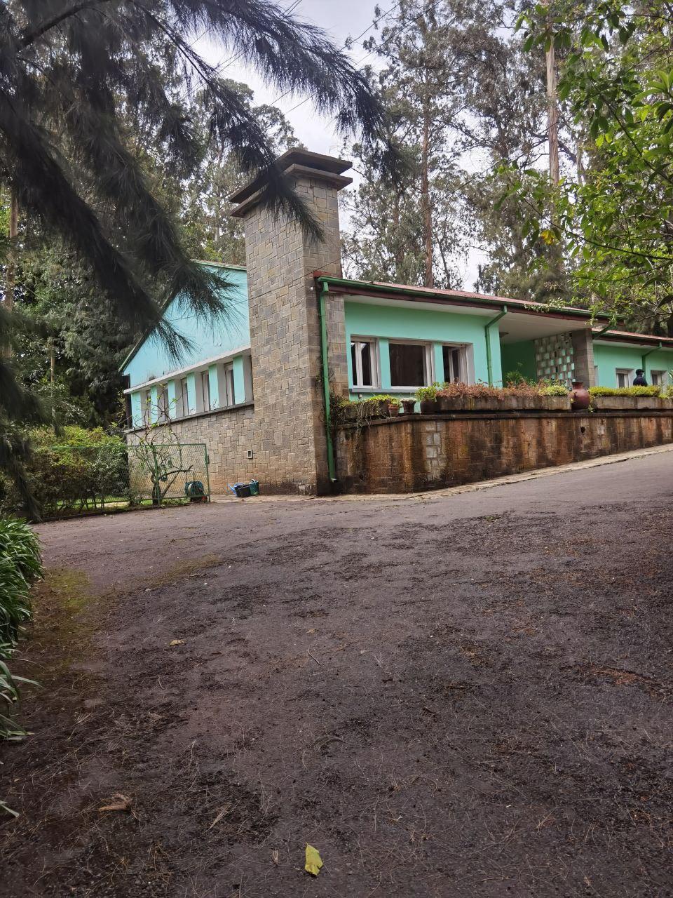 ሰፊ ግቢ ያለው ዘመናዊ ቪላ 3,800 Sqm Villa For Rent In Addis Ababa